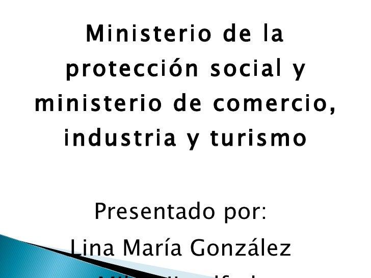 <ul><li>Ministerio de la protección social y ministerio de comercio, industria y turismo </li></ul><ul><li>Presentado por:...