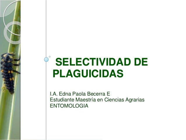 SELECTIVIDAD DE PLAGUICIDASI.A. Edna Paola Becerra EEstudiante Maestría en Ciencias AgrariasENTOMOLOGIA