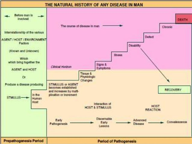 Natural History Of A Disease In Epidemiology