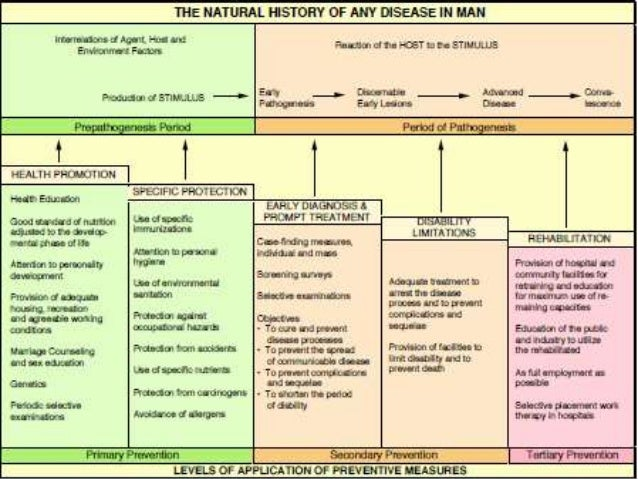 Natural History Of Childhood Obesity
