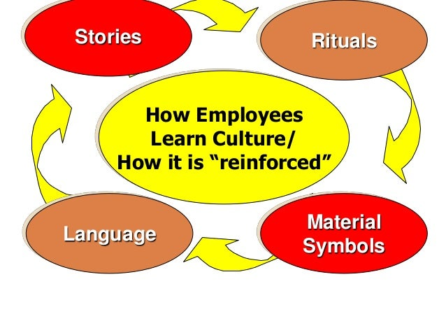 how employees learn culture pdf