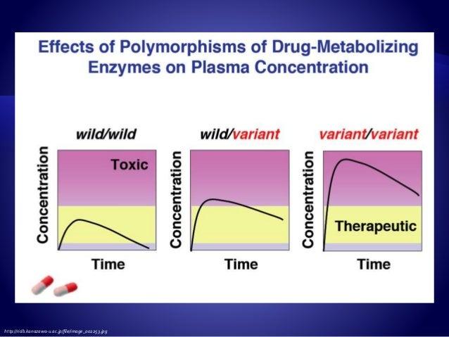 Phase I metabolizing enzymes Cytochromes P450 Phase II metabolizing enzymes UGTs, GSTs, SULTs, MTs, EHs, NATs Drug transpo...