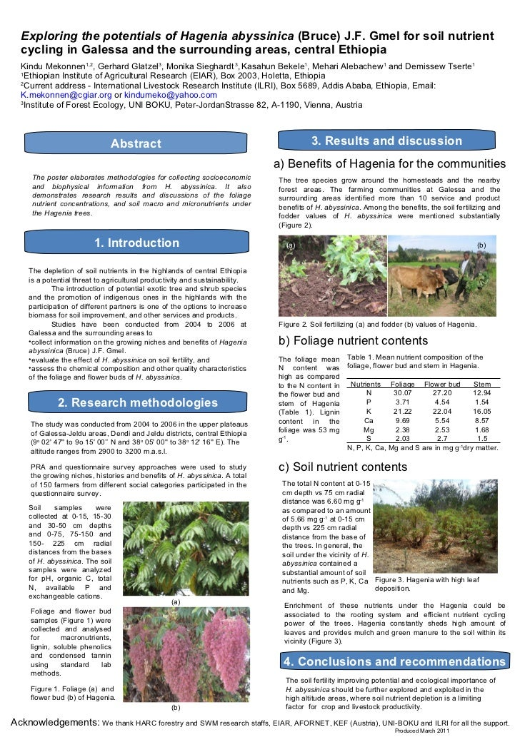 Exploring the potentials of Hagenia abyssinica  (Bruce)   J.F. Gmel for soil nutrient cycling in Galessa and the surroundi...
