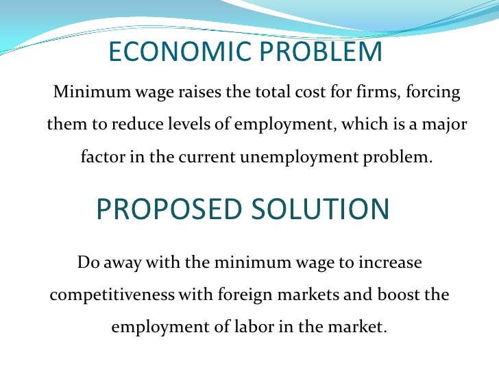 Economic Policy Proposal Minimum Wage
