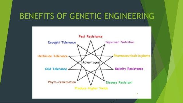 The potential of bioethics and genetic engineering