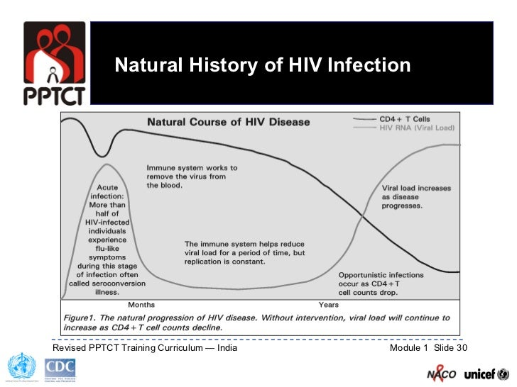Natural History Vertical Transmission Of Hiv