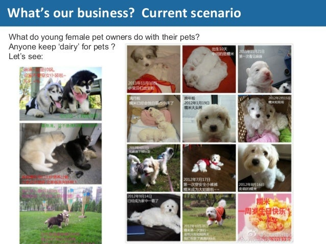 What do young female pet owners do with their pets? Anyone keep 'dairy' for pets ? Let's see: What's our business? Current...
