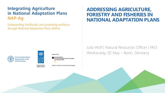 ADDRESSING AGRICULTURE, FORESTRY AND FISHERIES IN NATIONAL ADAPTATION PLANS Julia Wolf | Natural Resources Officer | FAO W...