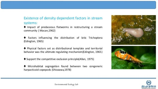 Final Ppt Of Stream Ecology 1