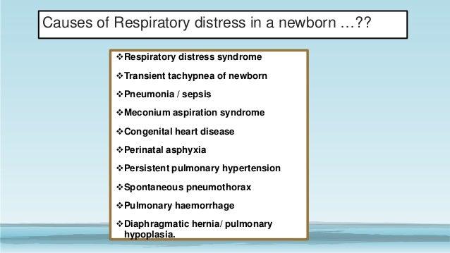 Respiratory physiology & Respiratory Distress syndrome in a