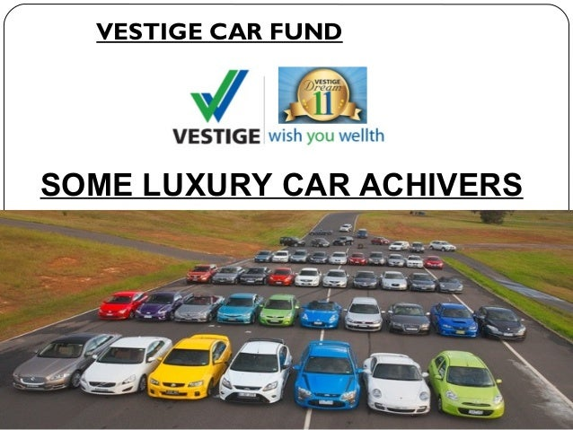 Vestige Business Plan 9176312345