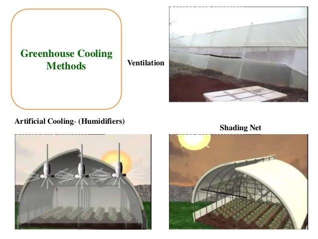 Shade net house project report