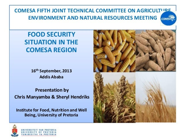 FOOD SECURITY SITUATION IN THE COMESA REGION 16th September, 2013 Addis Ababa Presentation by Chris Manyamba & Sheryl Hend...