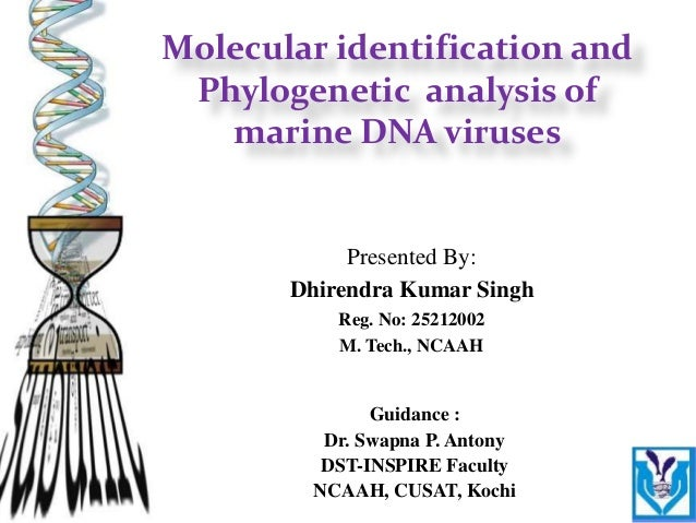 Guidance : Dr. Swapna P. Antony DST-INSPIRE Faculty NCAAH, CUSAT, Kochi Presented By: Dhirendra Kumar Singh Reg. No: 25212...