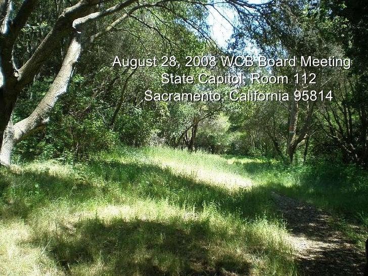 Irish   Hills (Andre Ranch) August 28, 2008 WCB Board Meeting State Capitol, Room 112 Sacramento, California 95814
