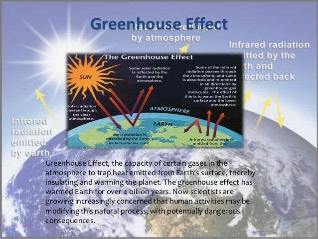 the characteristics and dangers of acid rains the green house effect and decrease in the ozone layer All over the world, so it is everywhere, constantly greenhouse gases are flowing in forest areas, resulting in the decrease of soil moisture and the.