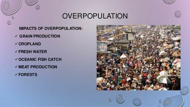 the importance of the issue of overpopulation Overpopulation essay  this issue of overpopulation in africa has a huge impact on the country and its government to feed all  the importance of an immigration.