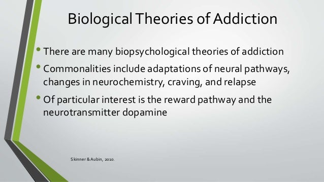 theories and a biopsychology of addiction Addiction overview: theories of addiction in attempting to explain why people  become dependent on drugs, a variety of different approaches have been taken.