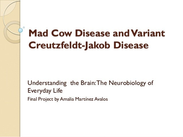 The elusive prion and cjd diseases