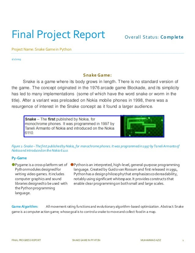 Final project report Snake Game in Python