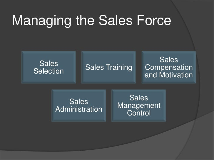 Guidelines for Managing an International Sales Force