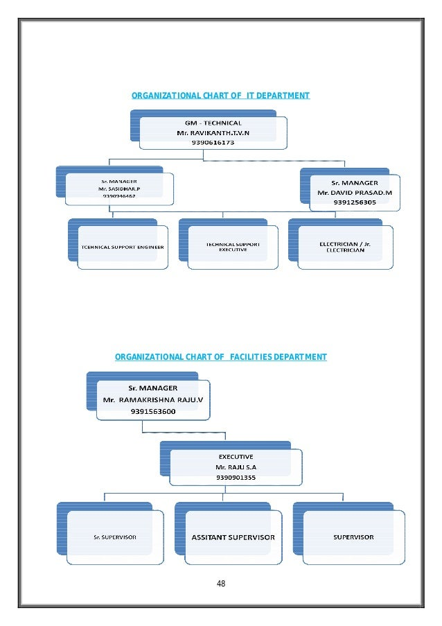 Doc638479 Roles and Responsibilities Chart Organization Chart – Roles and Responsibilities Chart