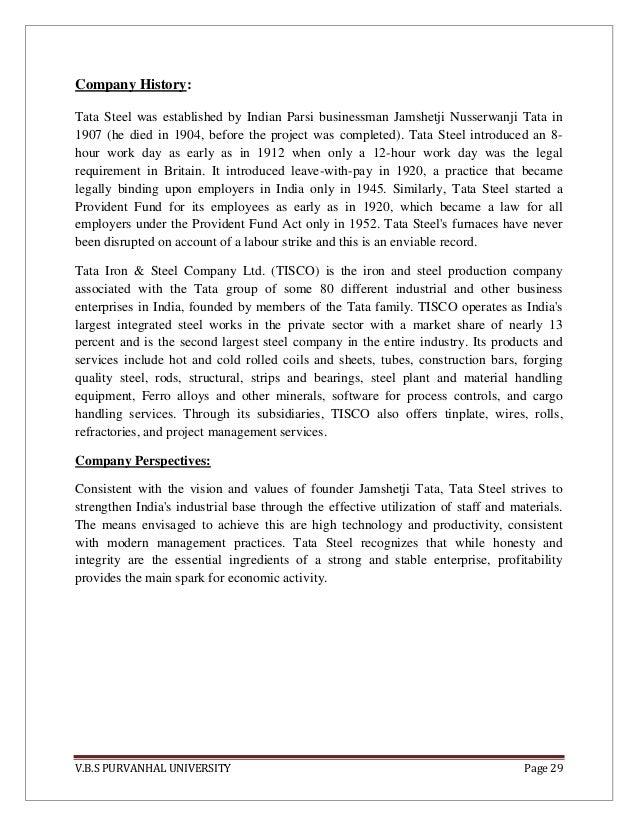report on welfare of tata steel – I Have a Dream Too Worksheet
