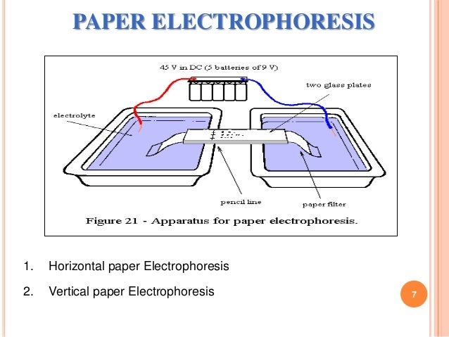 research papers on agarose gel electrophoresis Get your pcr® reagents here including agarose and dna ladders, gel loading tips and quality x-ray film (at market-beating prices) to complete your electrophoresis processes, our growing line includes transilluminators, imaging systems, and products for chemiluminescence & blotting.