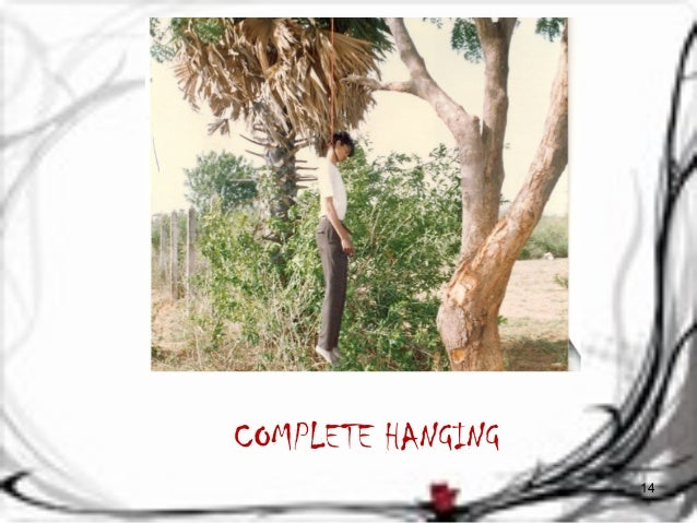COMPLETE HANGING  14