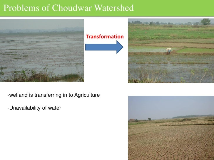 Problems of Choudwar Watershed                                     Transformation     -wetland is transferring in to Agric...