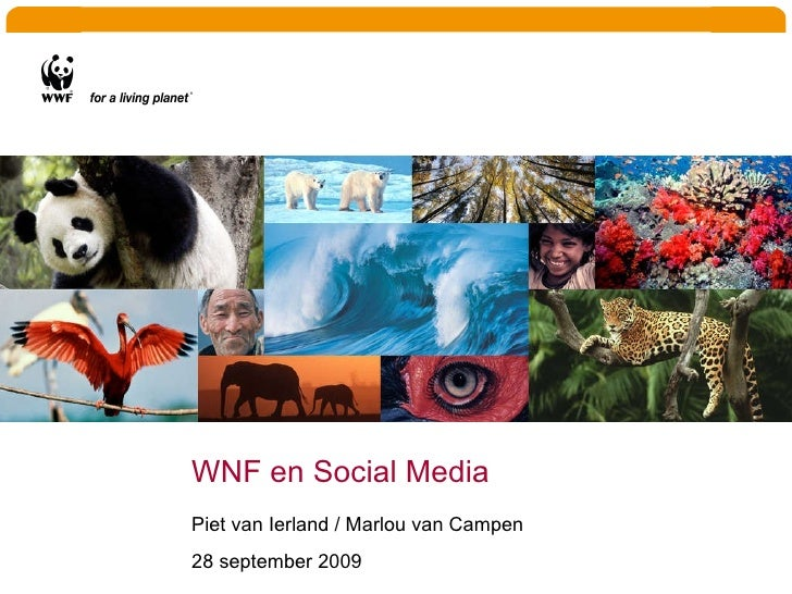 WNF en Social Media Piet van Ierland / Marlou van Campen 28 september 2009