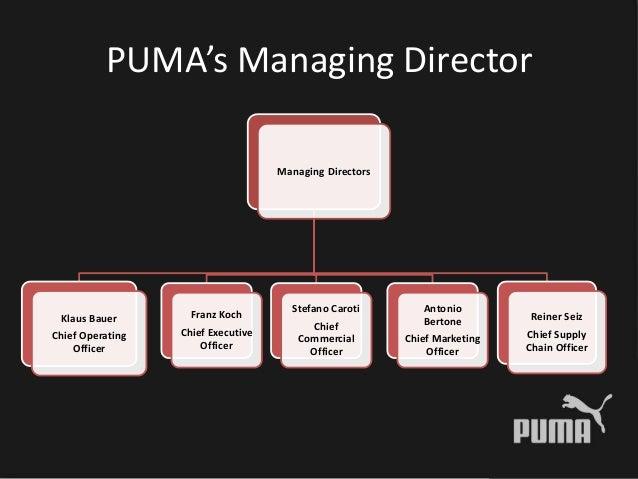 PUMA analysis