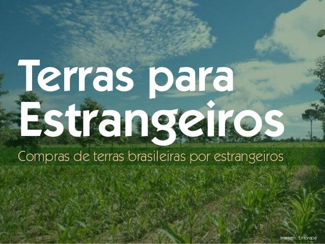 Imagem: Embrapa Terras para Estrangeiros Compras de terras brasileiras por estrangeiros