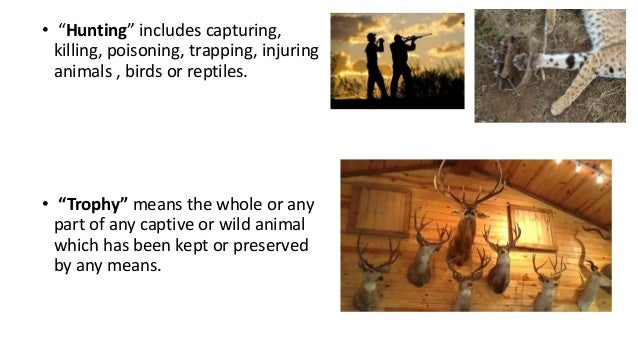 when was the wildlife protection act implemented in india