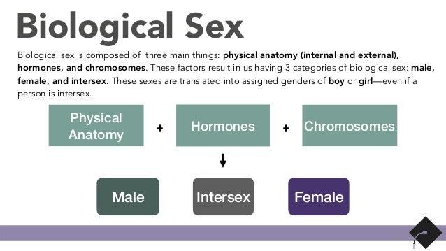 Sexual orientation definition wikipedia
