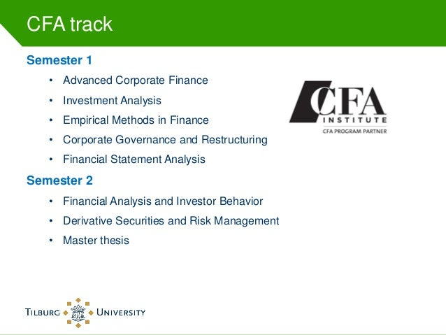 corporate finance master thesis