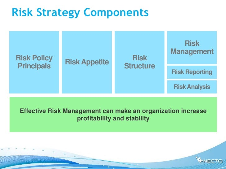 Risk Strategy Components                                                   Risk                                           ...