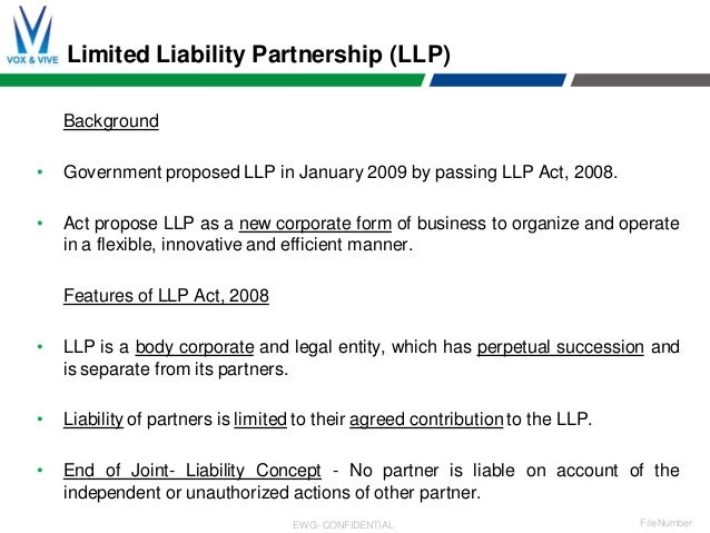 Ceo liability brief