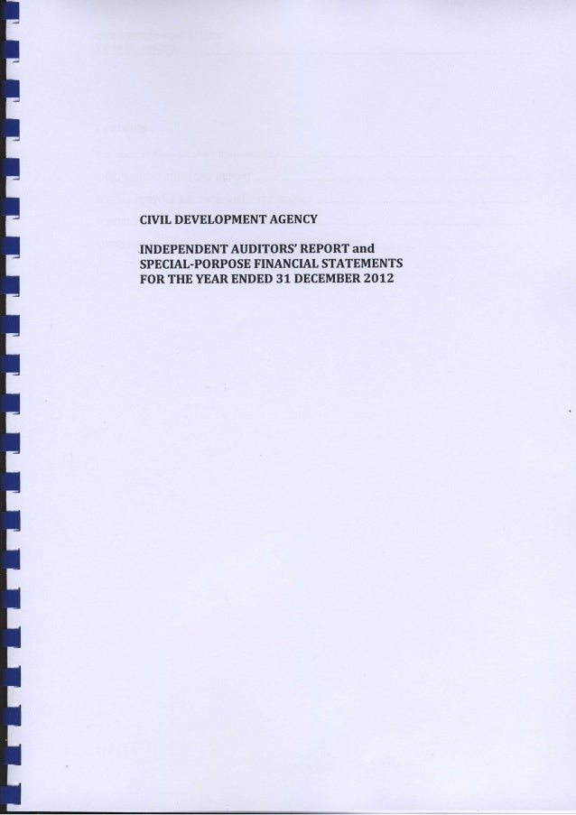 CryIL DEVELOPMENTAGENCY INDEPENDENTAUDITORS'REPORTand SPECIAL-PORPOSEFINANCIALSTATEMENTS FORTHEYEARENDED31 DECEMBER2012