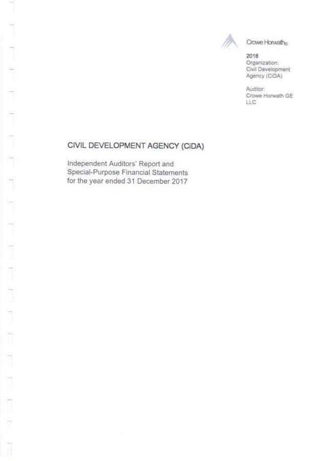 Financial Audit 2017