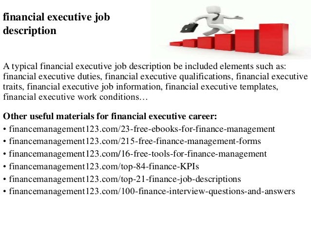 finance executive job description pdf