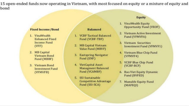 Finance & leasing company the case of Viet Nam