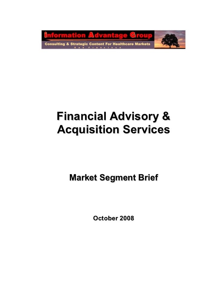 Financial Advisory &Acquisition Services  Market Segment Brief       October 2008
