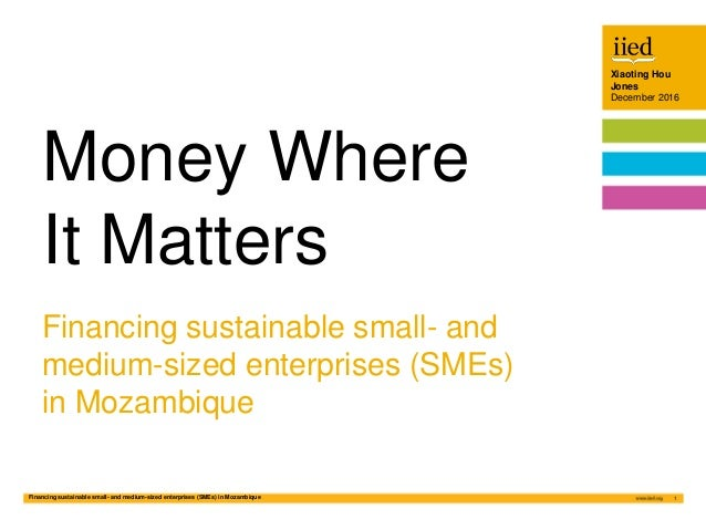 Financing sustainable small- and medium-sized enterprises (SMEs) in Mozambique 1 Xiaoting Hou Jones December 2016 Author n...