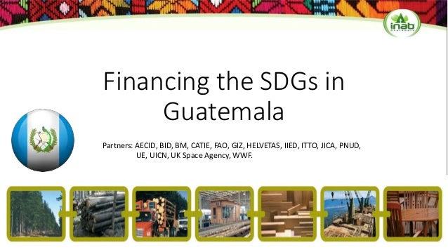 Financing the SDGs in Guatemala Partners: AECID, BID, BM, CATIE, FAO, GIZ, HELVETAS, IIED, ITTO, JICA, PNUD, UE, UICN, UK ...