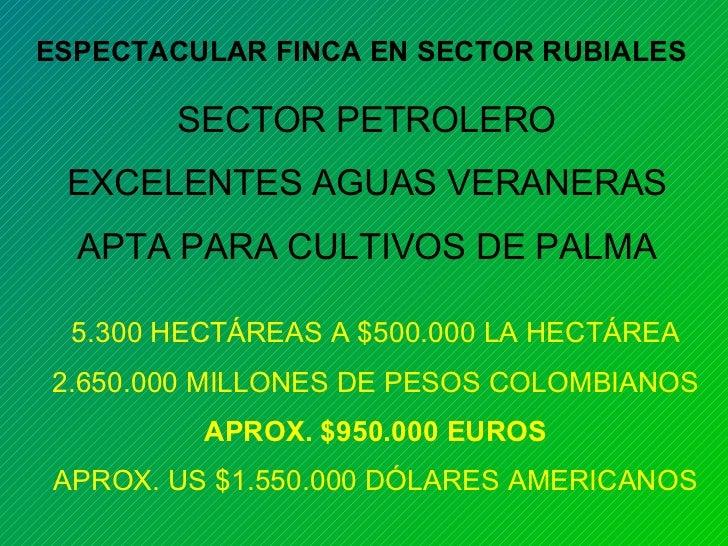 ESPECTACULAR FINCA EN SECTOR RUBIALES SECTOR PETROLERO EXCELENTES AGUAS VERANERAS APTA PARA CULTIVOS DE PALMA 5.300 HECTÁR...