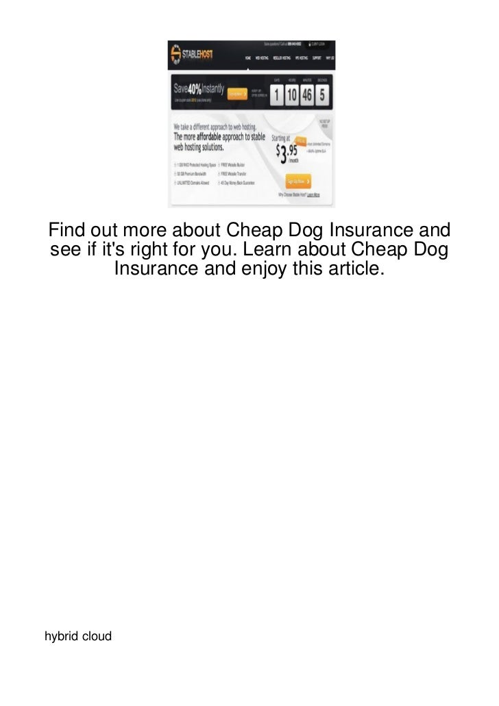 Find out more about Cheap Dog Insurance andsee if its right for you. Learn about Cheap Dog          Insurance and enjoy th...