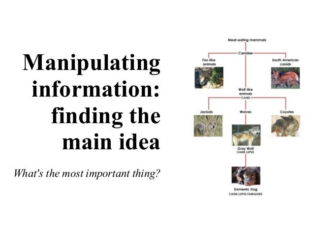 Manipulating information: finding the main idea What's the most important thing?