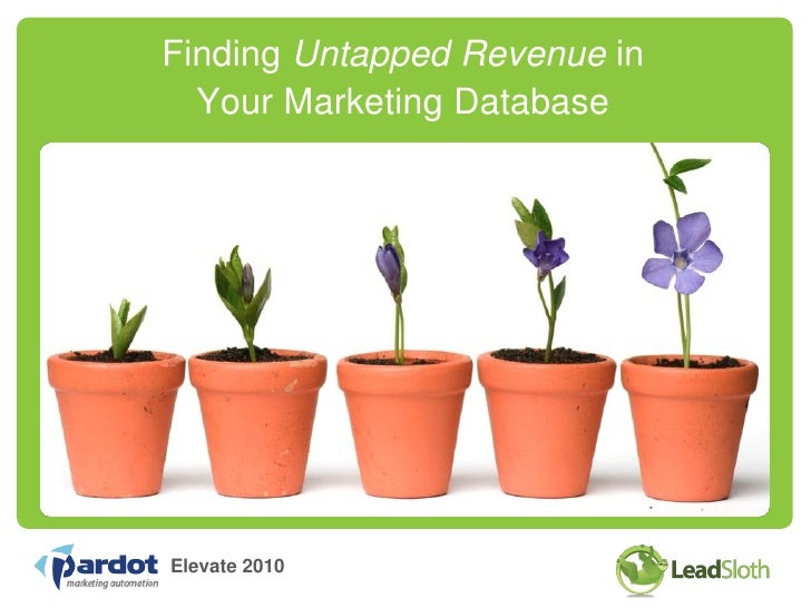 Finding Untapped Revenue in   Your Marketing Database     Elevate 2010