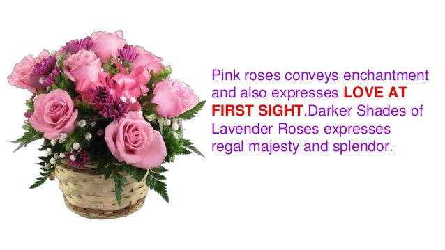 Find out different meanings of rose colors pink roses mightylinksfo